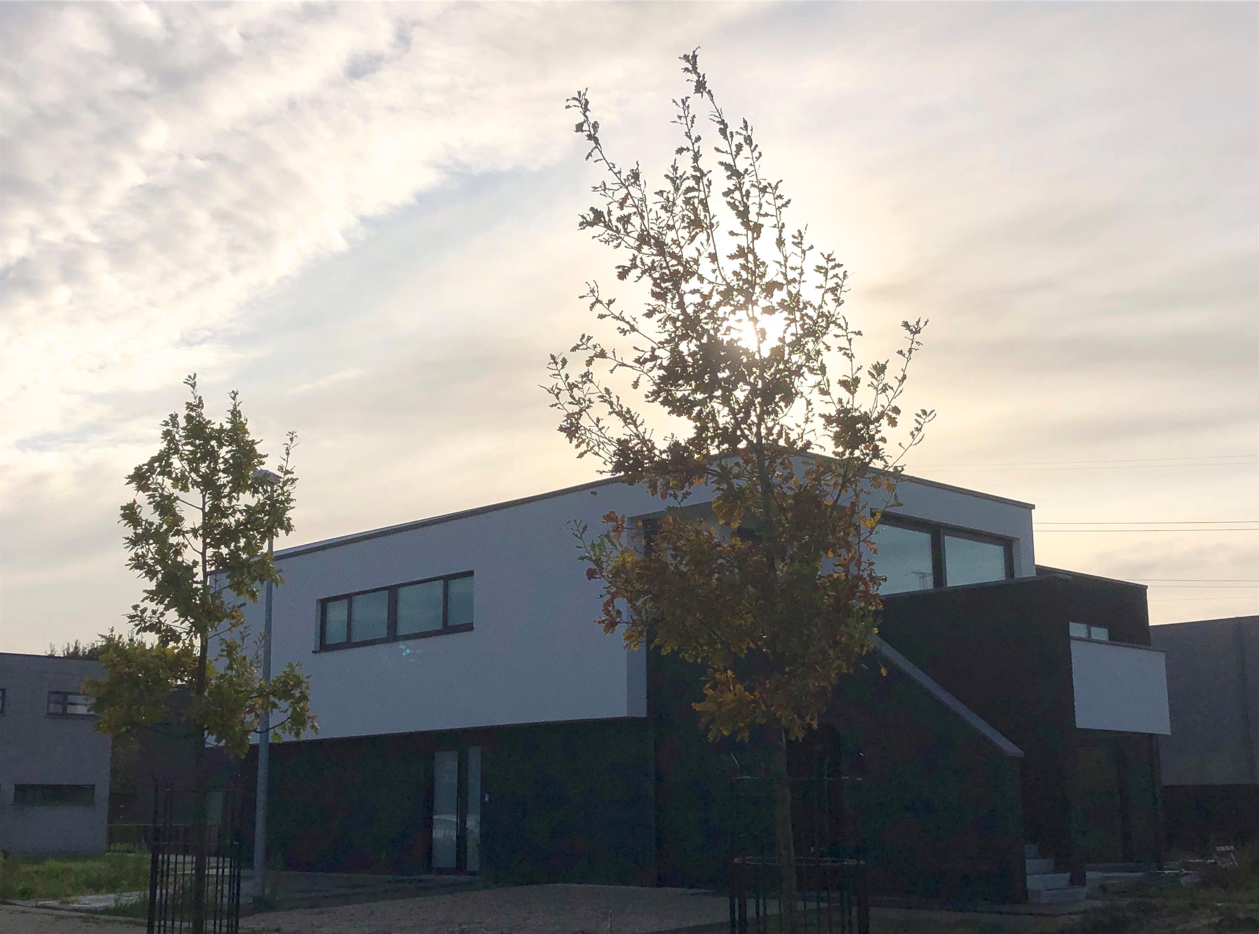 Architect Neeuwbouw Belsele